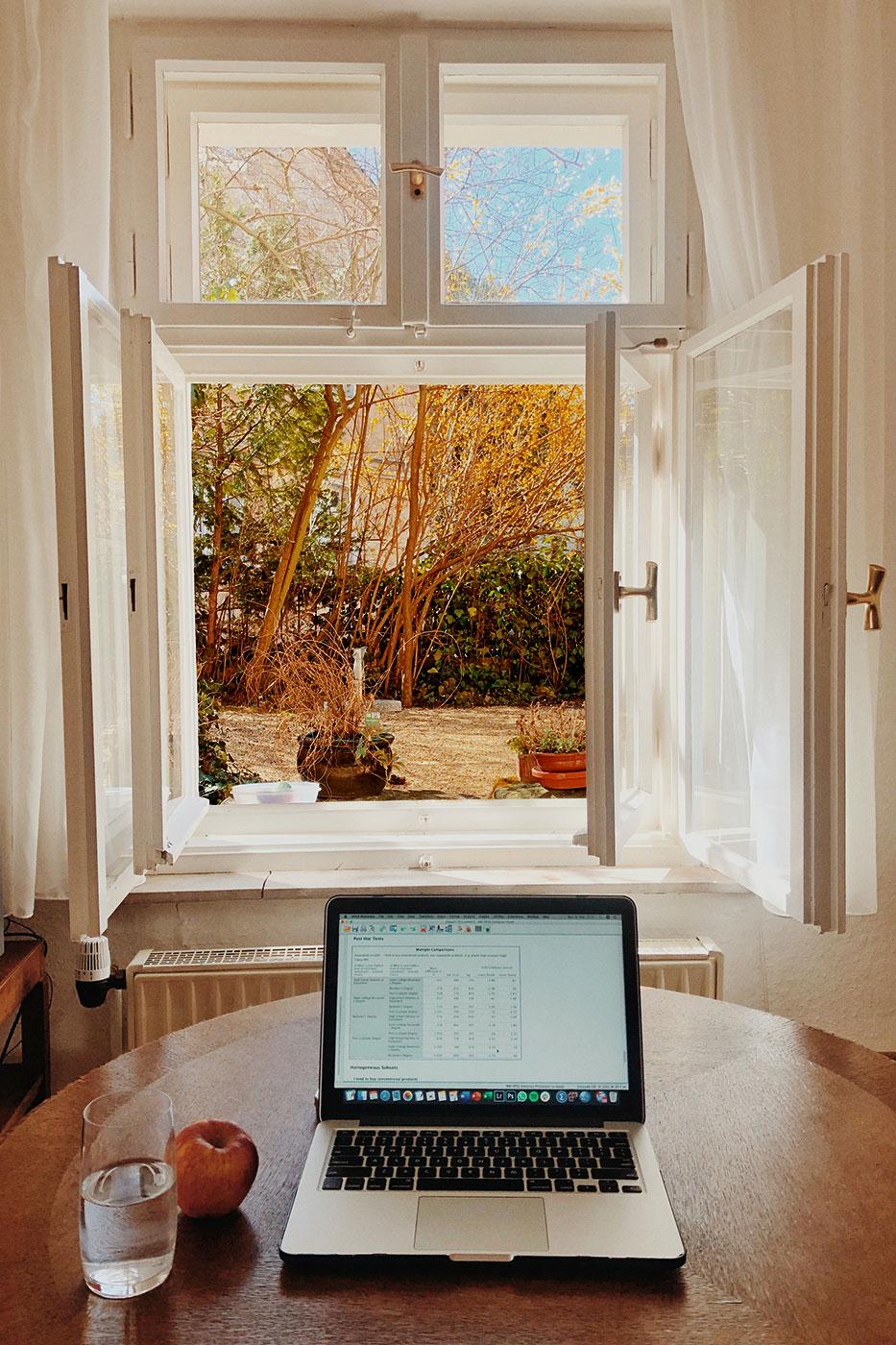 Fenster mit Insektenschutz im Home Office von Ottis Türen und Fenster